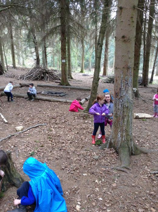 Making elf houses in the woods.