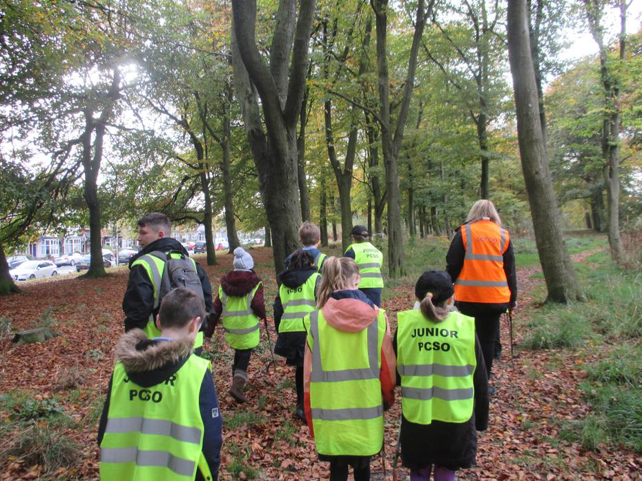 Looking for rubbish in the woods