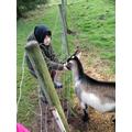 Sam enjoyed all the animals.