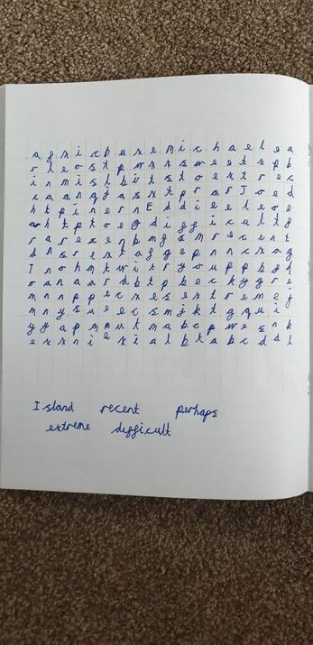 Michael's word search.