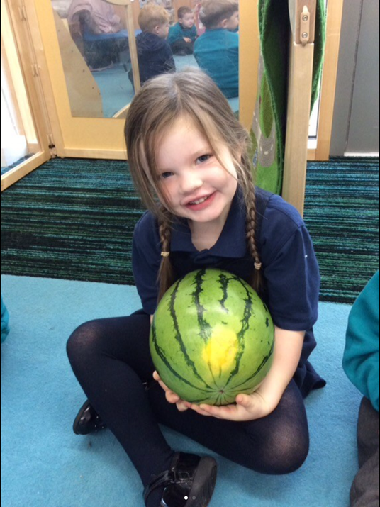 The enormous watermelon
