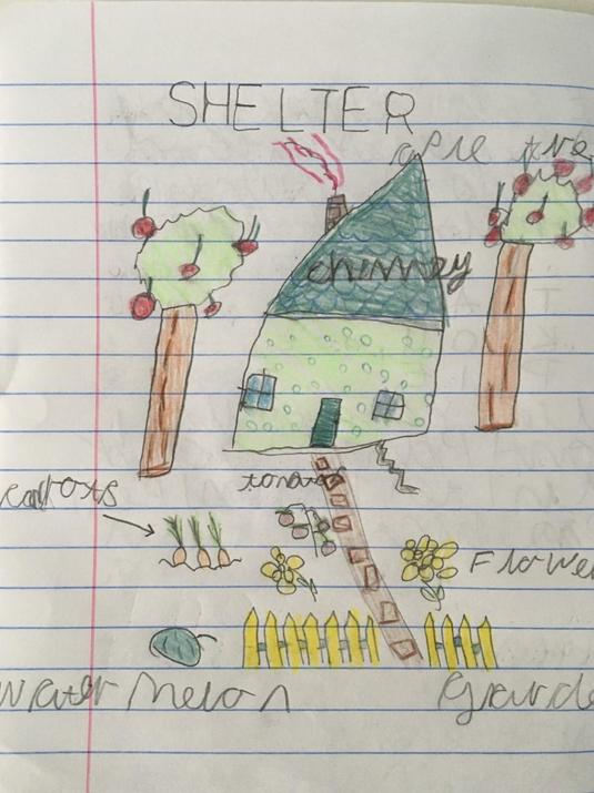and I  love your design for a bug shelter.