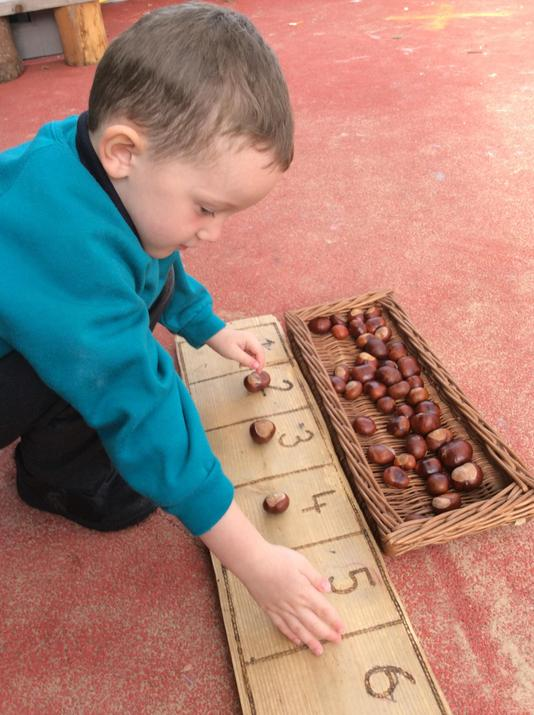 Counting conkers