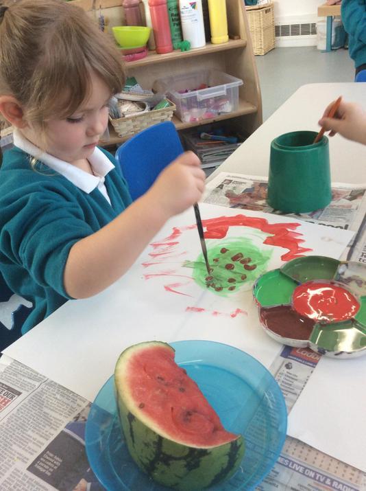 Watermelon colours
