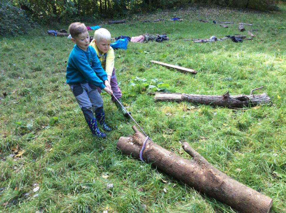 Using a timber hitch to transport logs.