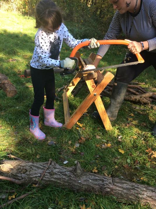 Sawing tree cookies.