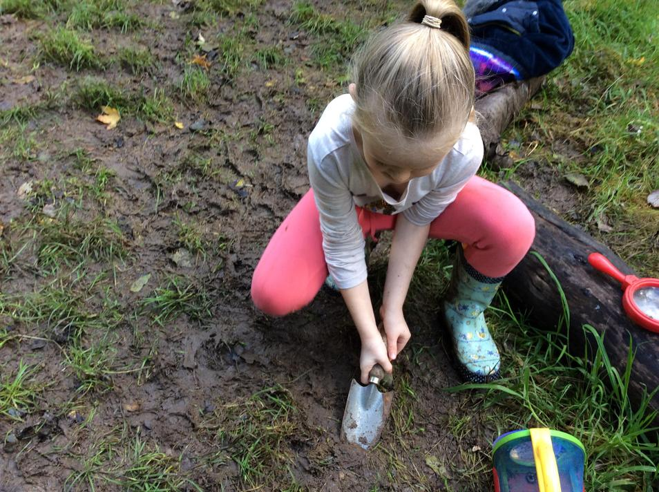 Digging for minibeasts!
