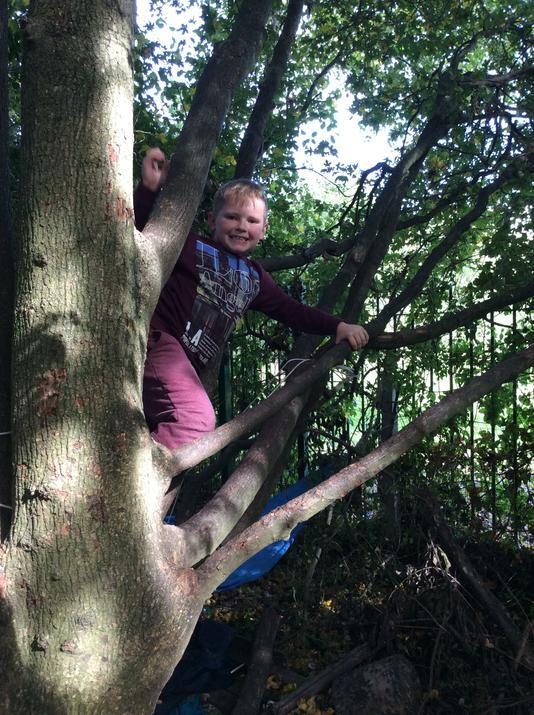 Climbing the special climbing tree.