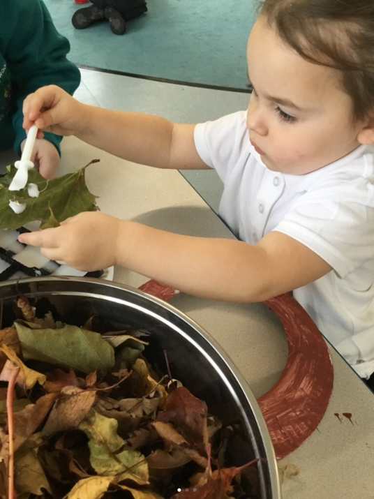 Creating with natural materials