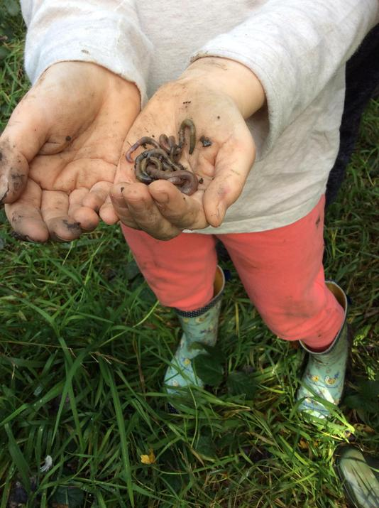 Megan was determined to find worms!