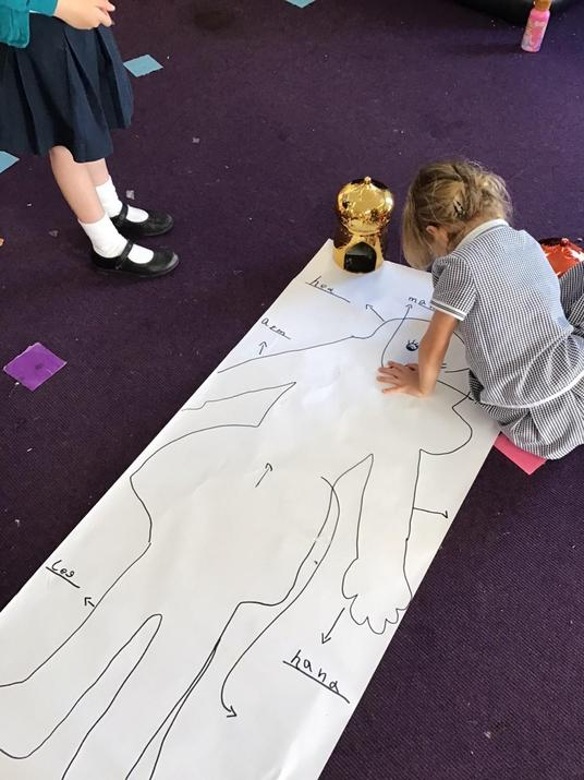We have been identifying the different parts of the body.