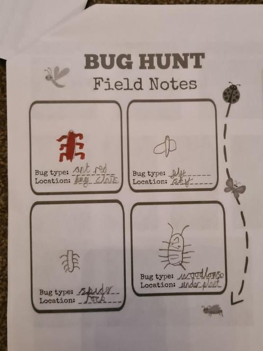 Bug hunt.
