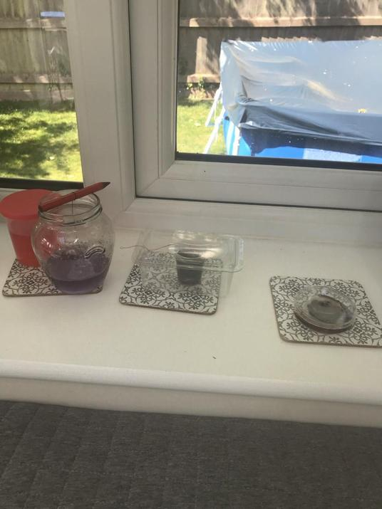 Harrison's science investigations.