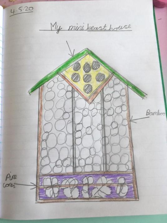 Chloe's bug house idea.