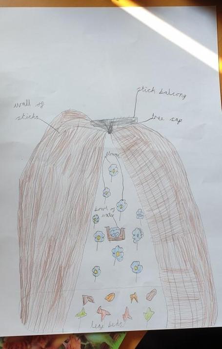 Michael's clever bug house idea