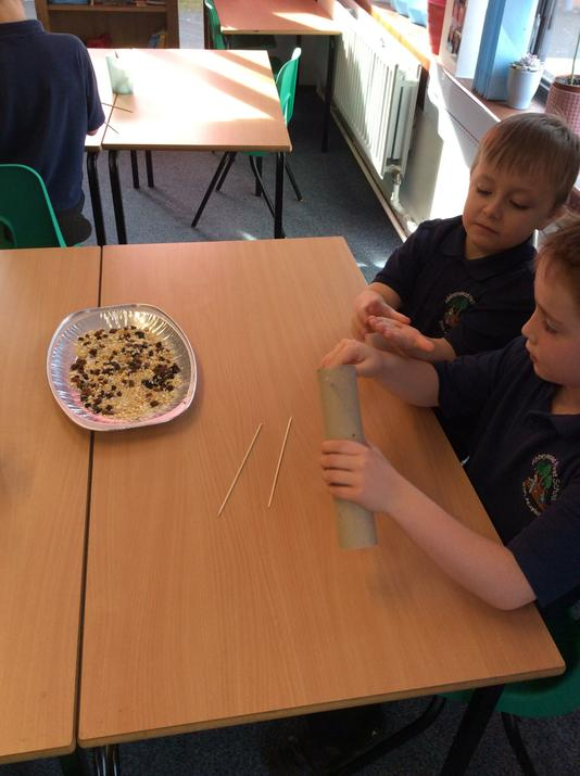 We created a tasty feast for birds...