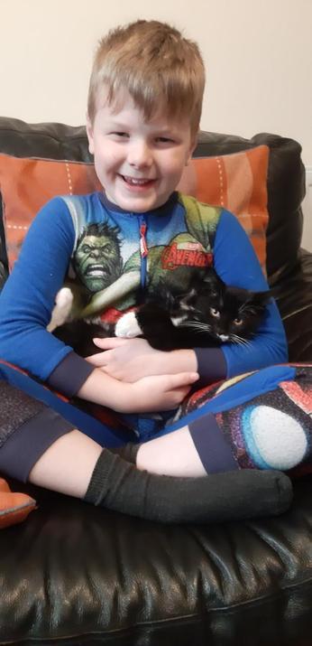 Meet Alfie - Zakk's new kitten!