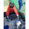 Exploring giant bubbles.