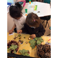 Exploring the Autumn Table