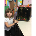 Look at our amazing nocturnal animal habitats!