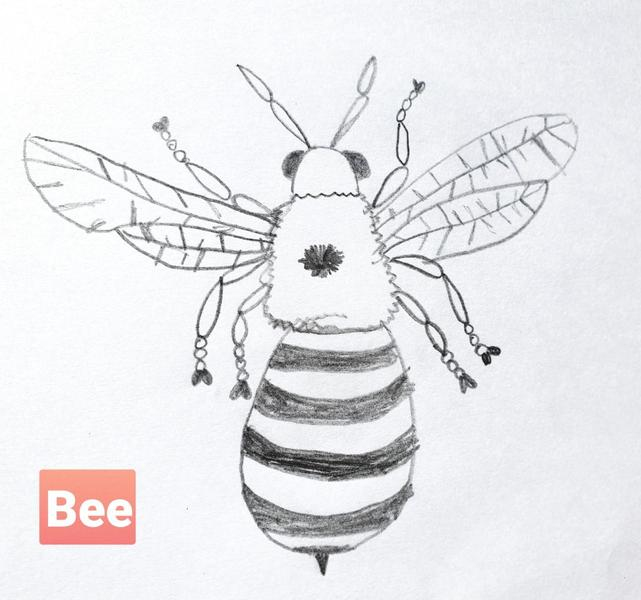 Beautiful Bee line drawing by Grace