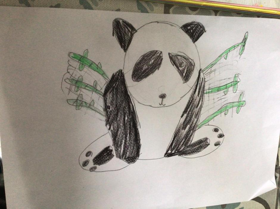 Another great panda.