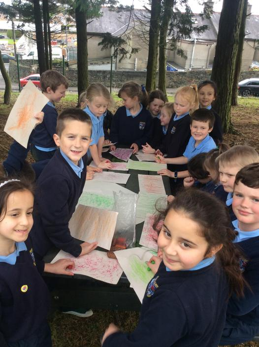 Comparing our bark rubbings. We loved doing these!
