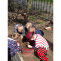 Discovering minibeasts