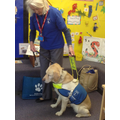 Rhoda the Guide Dog came to visit us