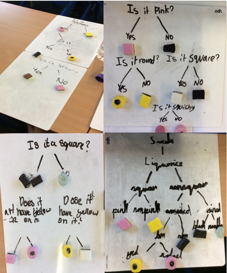 Classifying Liquorice All Sorts in science!