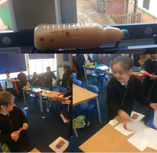 We have been learning about the components of blood in Science.
