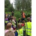 Talking about freshwater habitats
