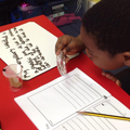 Investigating the lifecycle of a caterpillar