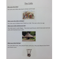 Information text: The Celts