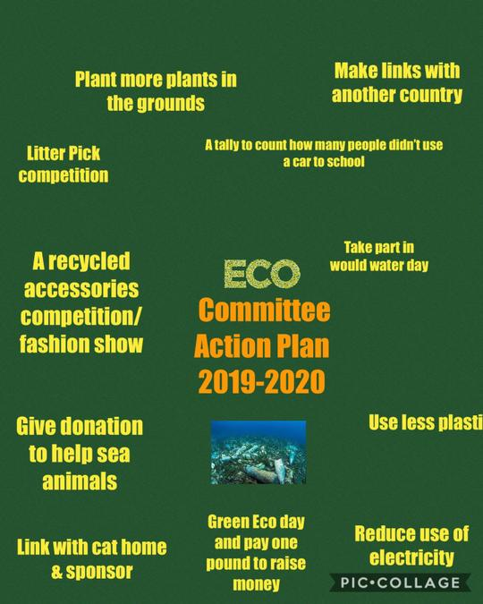 Eco Committee Action Plan