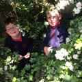 Finding a good place to hide our bug hotels.