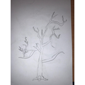 We sketch trees for background settings.