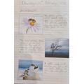 Descriptive writing using personification