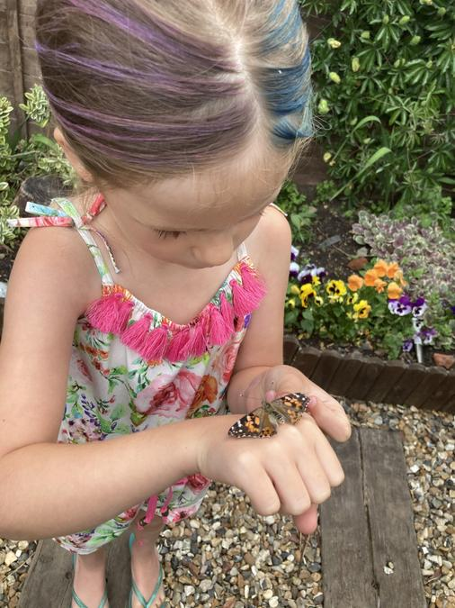Close up of the butterfly on Sylvie's hand