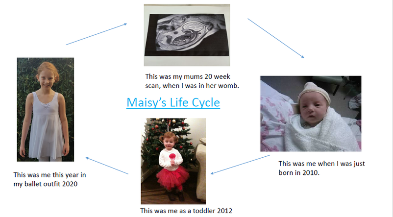 The Lifecycle of Maisy Scanlon. Wasn't she cute?