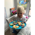 Butterfly baking