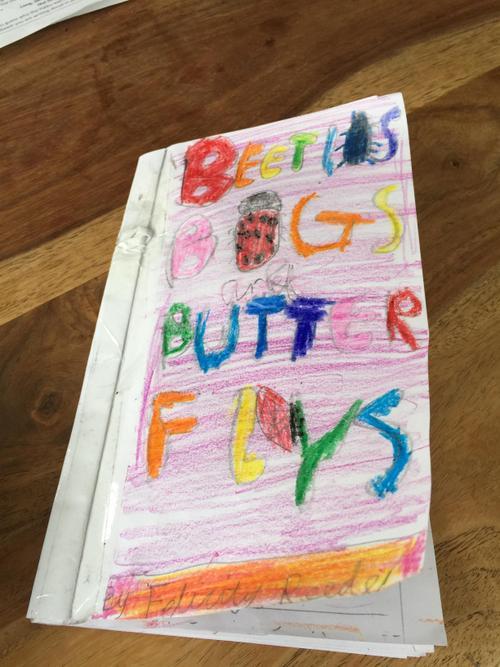 Felicity's Fact book