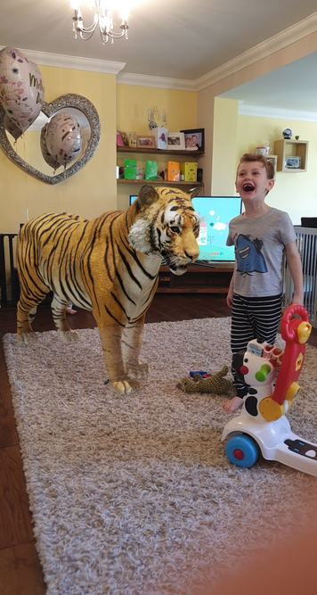 Look out! There's a tiger in your living room!