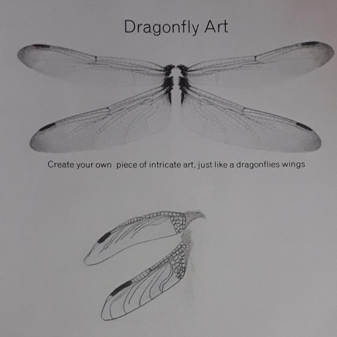Juliet's dragonfly art