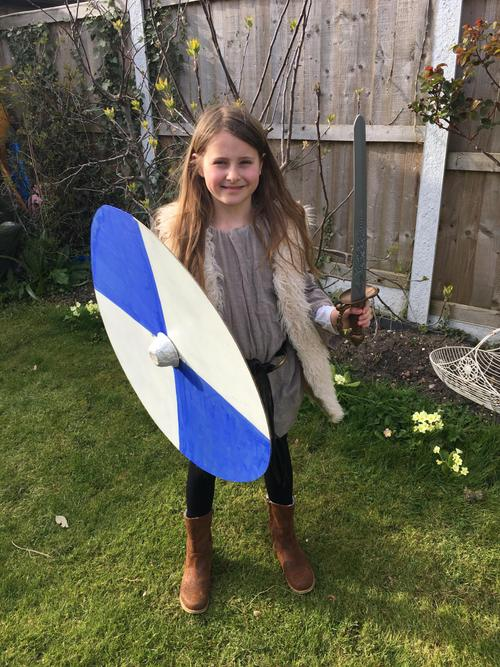 A wonderful Viking shield - all ready for Battle