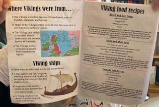 Erin's Viking fact book