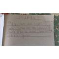 Esme's diary