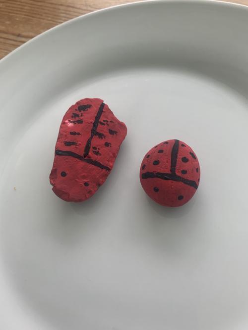 Mason's stone ladybirds