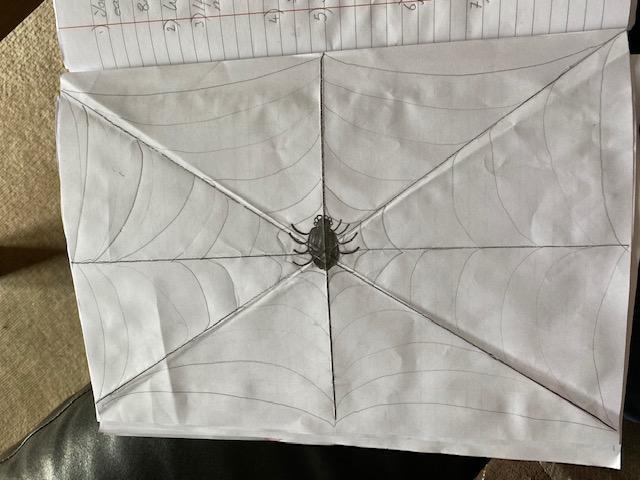 Erin's spider web