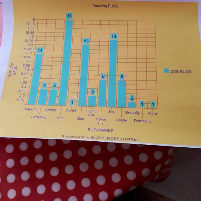 Zoe's bug bar chart